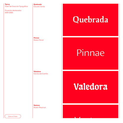 'Tipo.g 2020 - Proyectos destacados' by alex