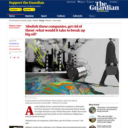 'Abolish these companies, get rid of them': what would it take to break up big oil?   Environment   The Guardian