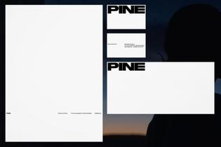 pine-albinholmqvist-3.jpg