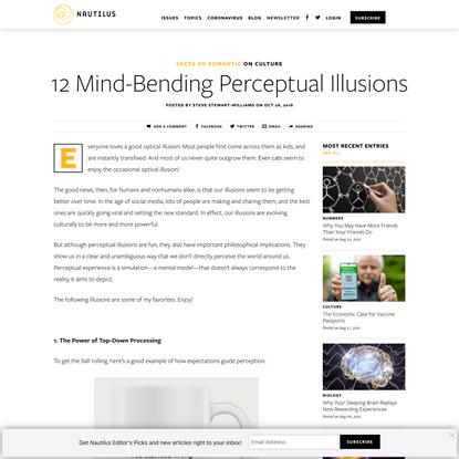 12 Mind-Bending Perceptual Illusions - Facts So Romantic - Nautilus