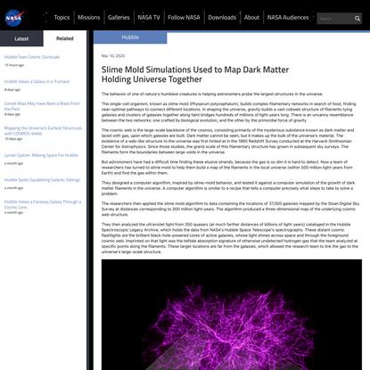 Slime Mold Simulations Map Dark Matter Holding Universe Together