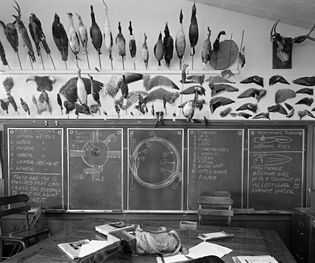 """Catherine Wagner, """"Optic Nerve"""" (7th Grade Science Room), 1983–87"""