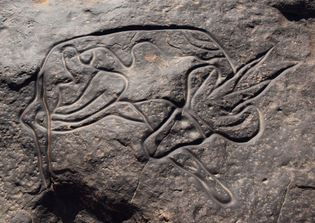 sleeping Antelope incised on rock up to 10,000 years ago at Tin Taghirt, Tassili n'Ajjer in Algeria