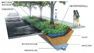 https://www.researchgate.net/figure/Bioswale-concept-diagram-1-Dirty-and-polluted-water-from-rooftops-roads-and-parking_fig1_335219312