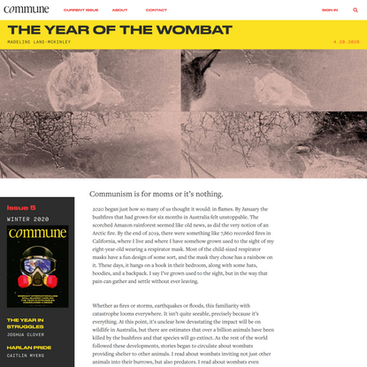 The Year of the Wombat | Madeline Lane-McKinley