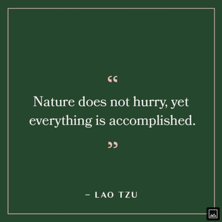 Wisdom of laozi