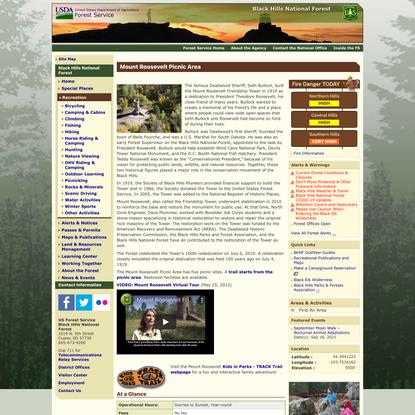 Black Hills National Forest - Mount Roosevelt Picnic Area
