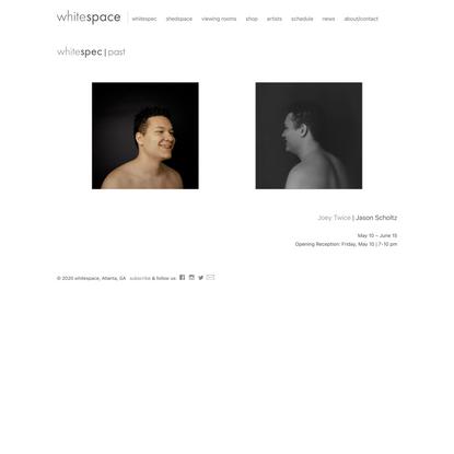 Jason Scholtz | whitespec | whitespace gallery | Atlanta Art Gallery