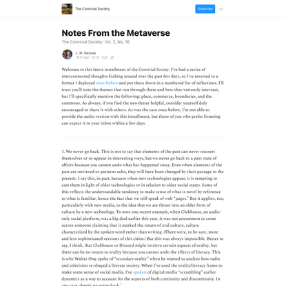 Notes From the Metaverse