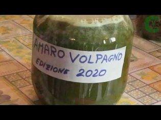 Amaro Volpagno: le erbe segrete per ottenere l'amaro più buono del mondo
