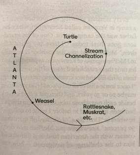 John McPhee, diagram for story structure