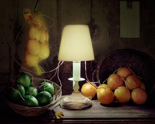 fruit-battery-still-life-citrus-2012.jpg