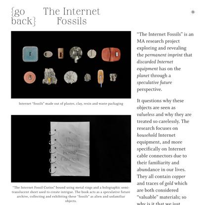 The Internet Fossils — Dasha Lugovkin