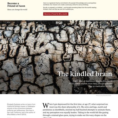 Should the 'kindling' concept direct mental-health treatment? - Elizabeth Svoboda | Aeon Essays