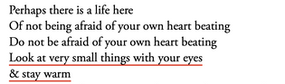 Bernadette Mayer, from The Way to Keep Going in Antarctica