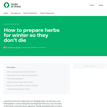 How to prepare herbs for winter so they don't die