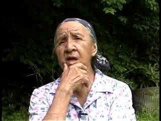 The Cherokee language