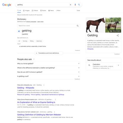 gelding - Google Search