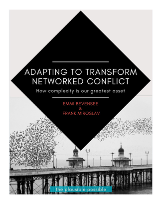 adapting-to-transform-networked-conflict-how-complexity-is-our-greatest-asset-bevensee-miroslav.pdf