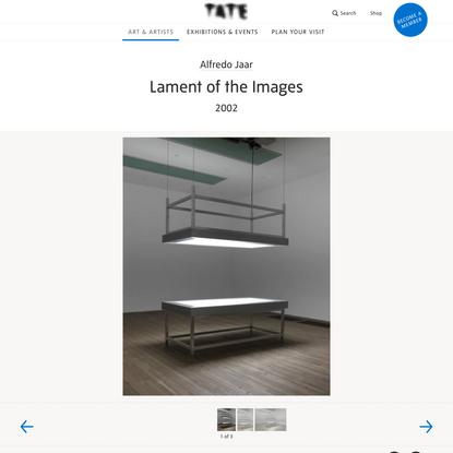 'Lament of the Images', Alfredo Jaar, 2002 | Tate