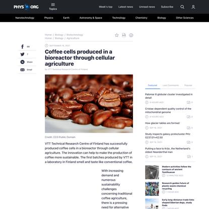 Coffee cells produced in a bioreactor through cellular agriculture