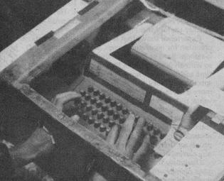 Leopold's Terminal Case, 1973