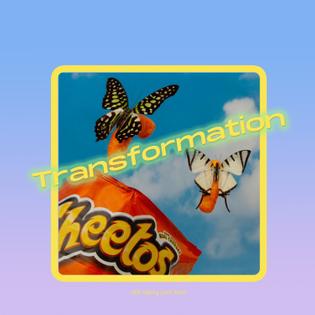 transformaion.jpg