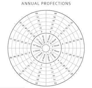 annual-profections.png