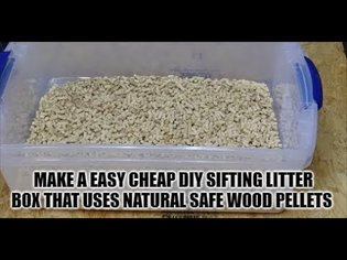 Best Diy Easy Build Sifting Large Litter Box Pan Use Healthy Cheap Pine Pellets Cats Kittens Animals