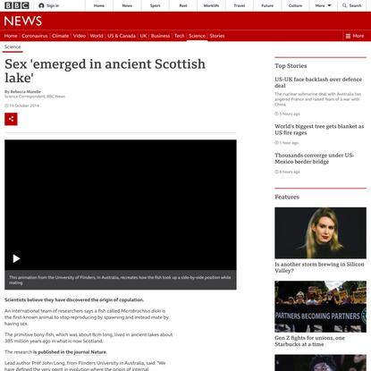 Sex 'emerged in ancient Scottish lake'
