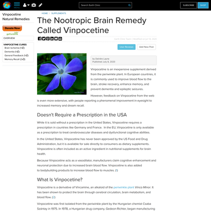 The Nootropic Brain Remedy Called Vinpocetine