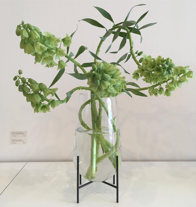Moment Flora (@momentbyreiko) on Instagram