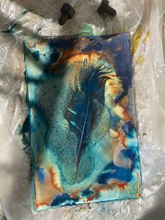 Turkey feather wet cyanotype