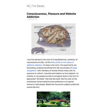 Consciousness, Pleasure and Website Addiction