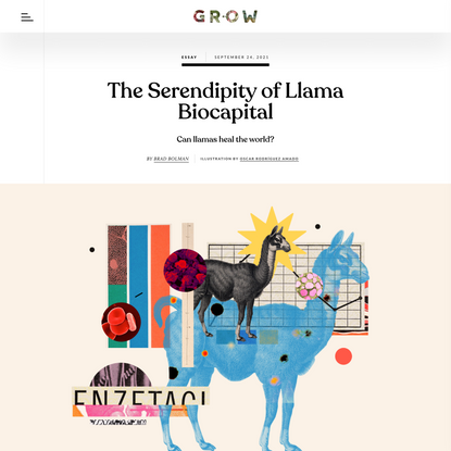 The Serendipity of Llama Biocapital