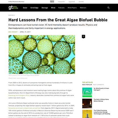 Hard Lessons From the Great Algae Biofuel Bubble