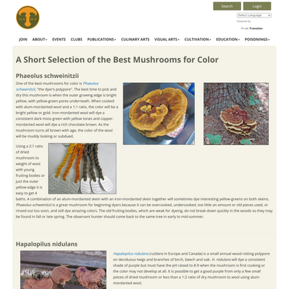 Selection of Mushrooms for Color - North American Mycological Association