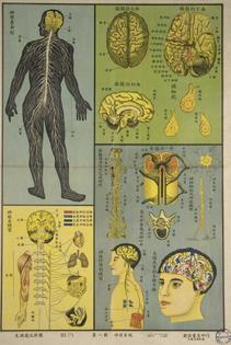 bodyandlight: Vintage Chinese poster