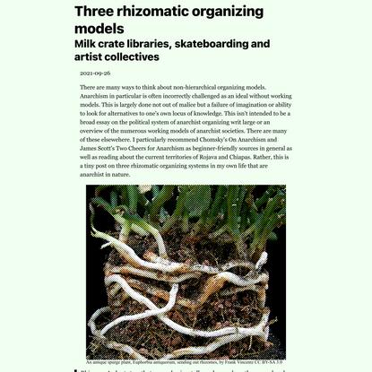 /home/lettuce/public_html/rhizomatic-organizing.html