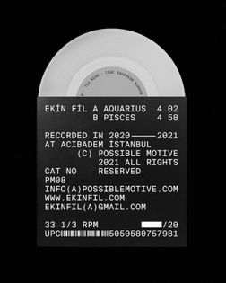 Aquarius/Pisces by Ekin Fil, 2021. Artwork by Henrik Stelzer.