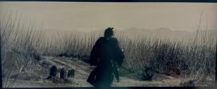 Yojimbo - Akita Kurosawa