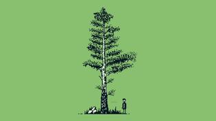 Peaceful  Nature Pixels