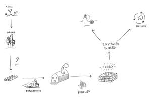 A Materials flows diagram: Timber