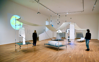 "Exhibition ""Fuzziness: Diffusion - Adaption"""