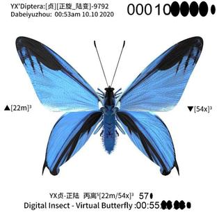 808b6616-b329-4b0d-b00e-fad36b6adce0.jpg