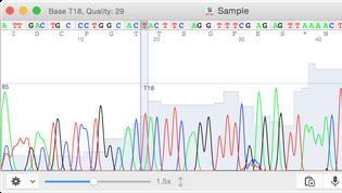 4peaks-screenshot-left@2x.png