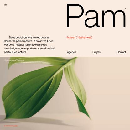 Agence web Toulouse, Pam — Création de site internet et stratégie