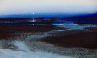 Image  'Marsh Moon'. Naomi Tydeman.