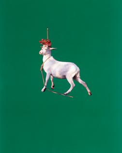 Sarah Charlesworth, Goat, 1985