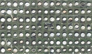 satellites-oil.jpg